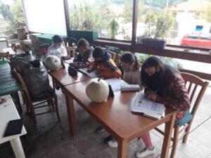 Εικόνες ντροπής : Τηλεκπαίδευση χωρίς ίντερνετ με ένα κινητό τηλέφωνο.